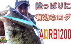 おかっぱりに有効なラトリンログADRB1200 ABSバス釣り動画 SMITHWICK Floating Deep Rattlin Rogue