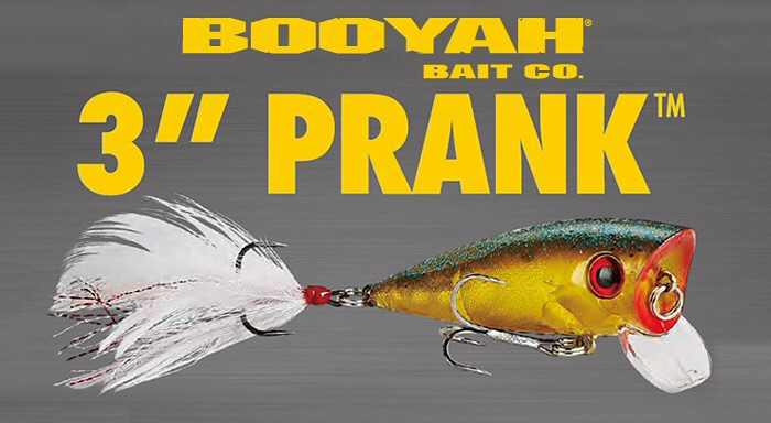 BOOYAH PRANK / BYPRK3